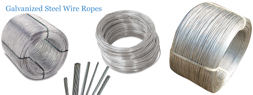 Galvanized Steel Wire Ropes ::